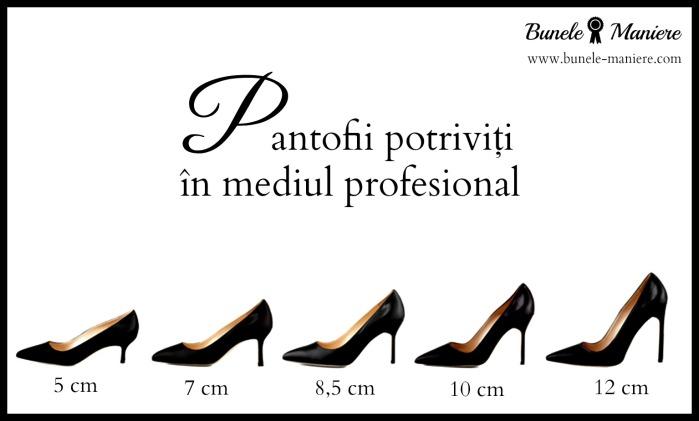 Pantofi recomandati in mediul profesional